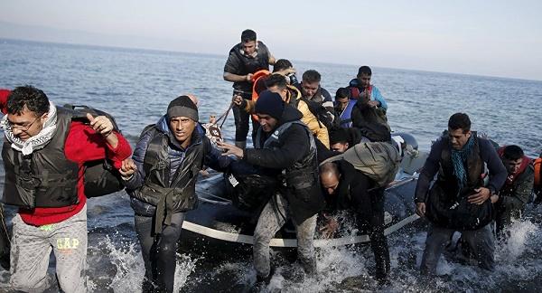 Migrants Fortex